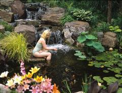 Wgi online journal derek fell 39 s dipping pool for Bog filter design