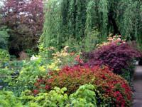 WGI Online Journal - The Design Philosophy Behind Monet's ...